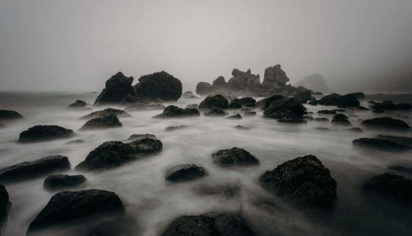 Foggyshorerocks