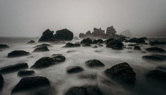 Foggyshorerocks